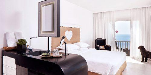 premium-room-royal